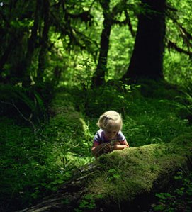 KidsNature_1  playlsi web