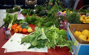 semaphore fruit and veg swap