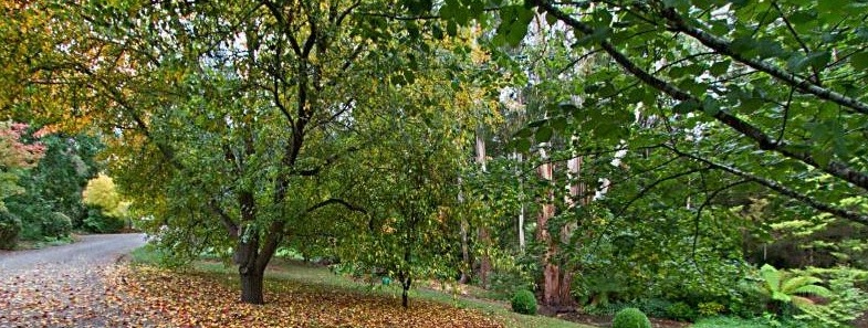 Garden mount-macedon